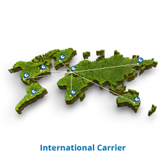 International Carrier
